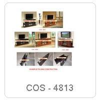 COS - 4813